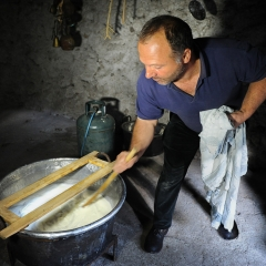 Shepherd making cheese, Sardinia