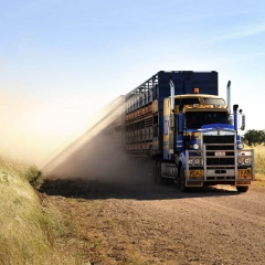 Road Train, Gibb River Road, Western Australia